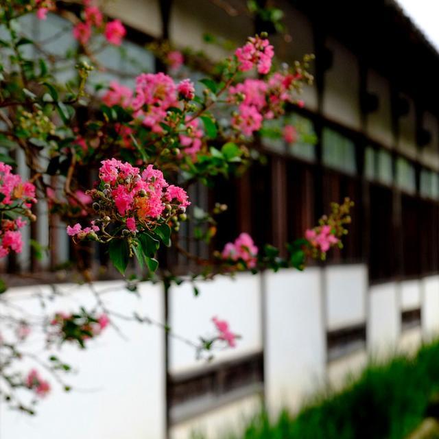 画像: 「島根・津和野 日本百景と津和野の街、太鼓谷稲成神社」