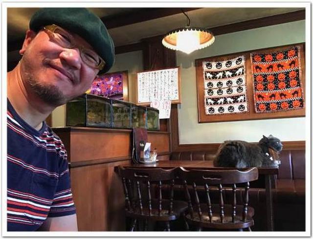 画像: カレーですよ2395(愛知豊橋 ラジャ)猫とジャズ。