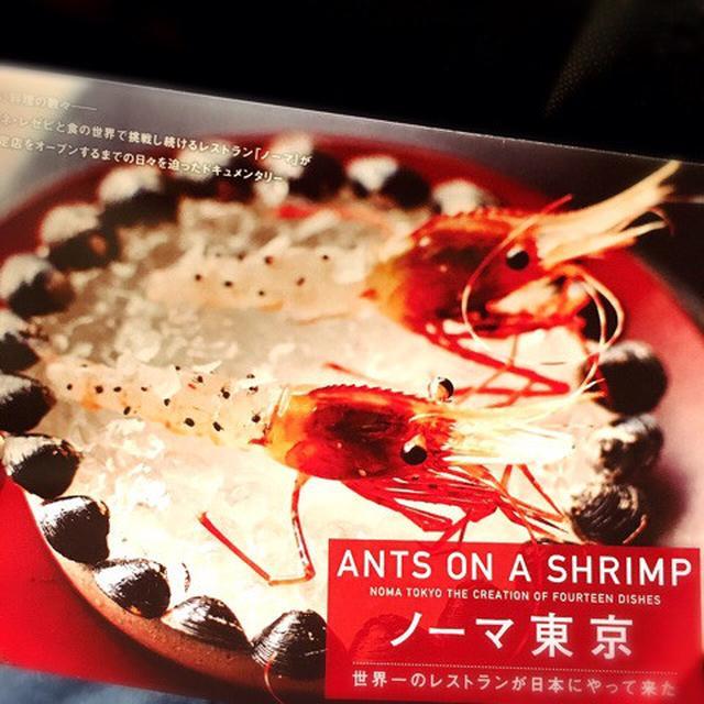 画像: ノーマ東京(ANTS ON A SHRIMP)