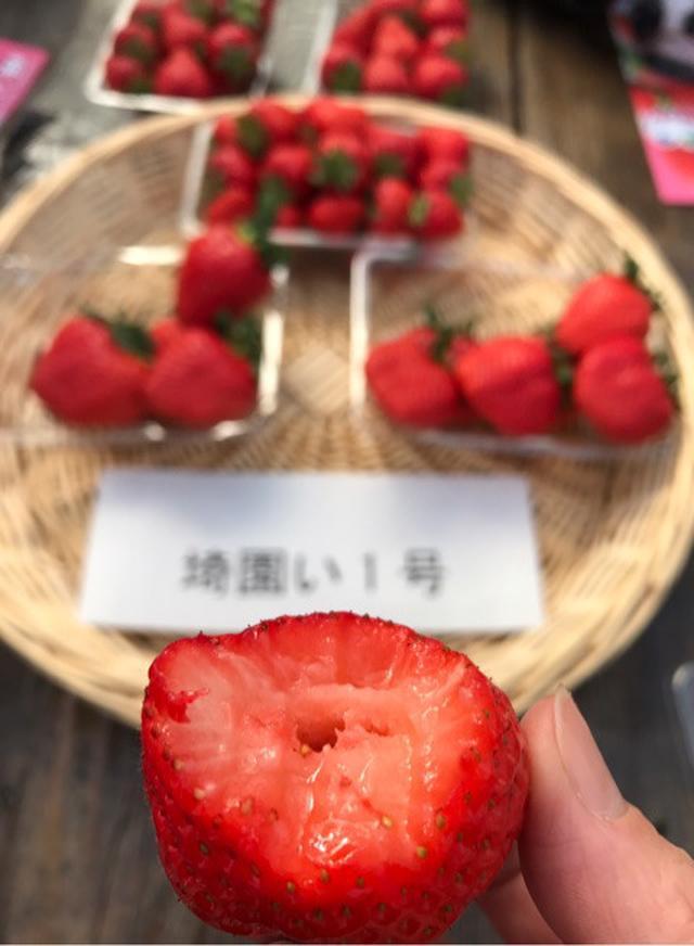 画像: 埼玉県農業普及を学んできました 秩父 小松沢レジャー農園ほか