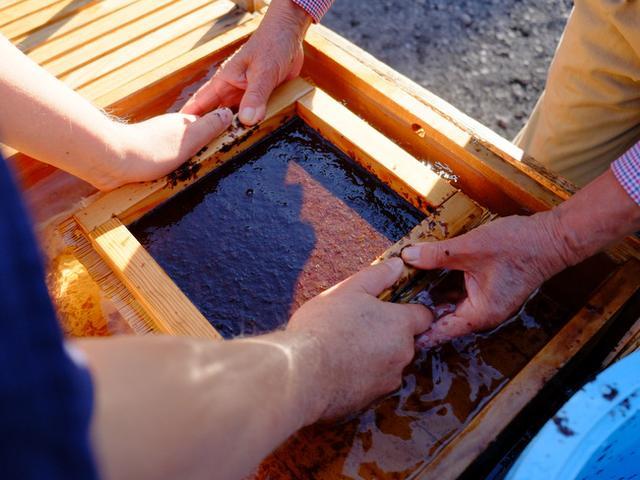画像: 「千葉・富津から木更津へ 海苔づくり体験と宝家のあさりのかき揚げ」