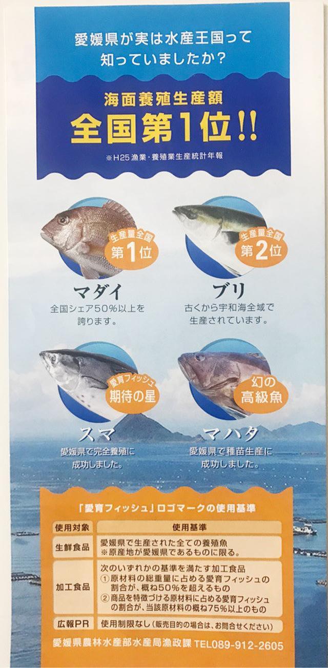 画像: 愛媛で育ったお魚「 愛鯛 」と「戸島一番ブリ」がおいしい!/ ippin