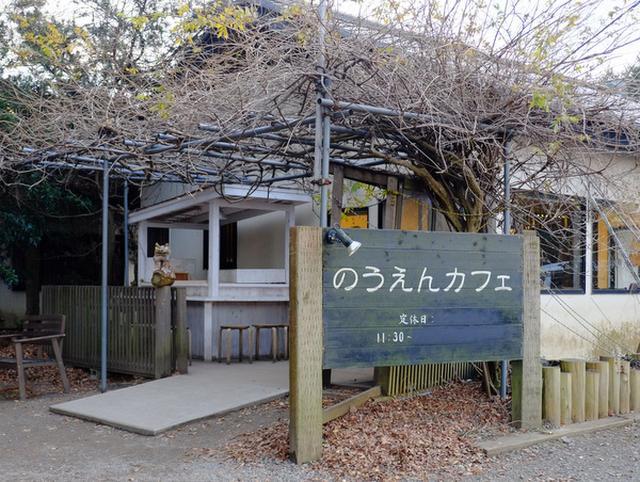 画像: 「千葉・袖ケ浦 袖ケ浦海浜公園タワー、のうえんカフェ、東京ドイツ村イルミネーション」
