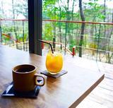 画像: 森の中でコーヒー