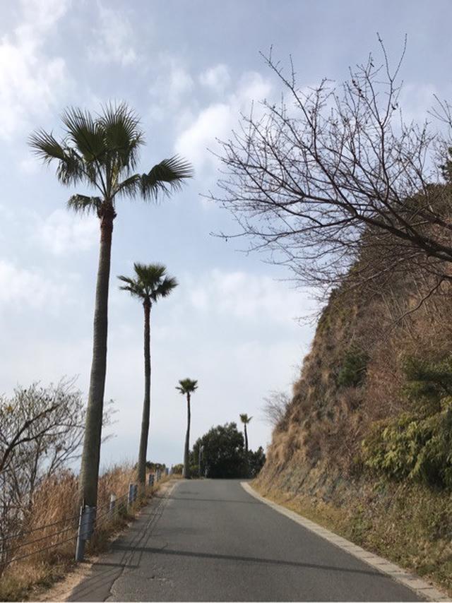 画像: 直島に行ってきました。島まるごとアートまち歩きああおもしろかった
