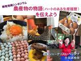 画像: 卵用地鶏シンポジウムin名古屋で発表した資料、公開しま〜〜す!たまごたまご