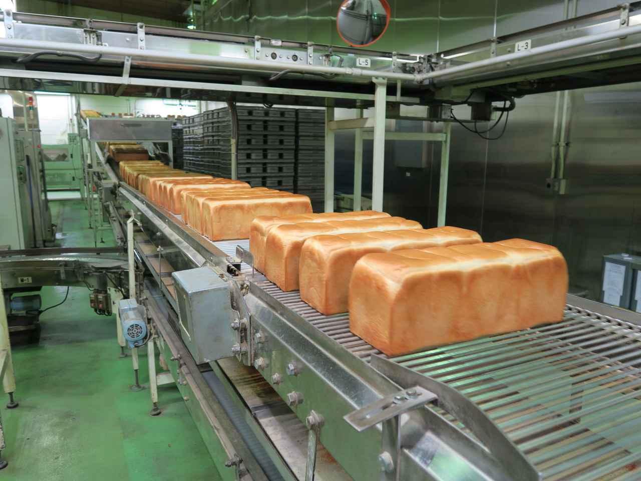 画像: 「フジパン工場見学」(埼玉県・入間市/工場見学) : フォーリンデブはっしー  公式ブログ