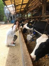 画像: 東京にも牧場がある!「磯沼ミルクファーム」世界で一番小さなヨーグルト工房