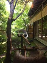 画像: 2017初夏の京都(12)日本庭園に極上甘味、下鴨の名店「茶寮宝泉」