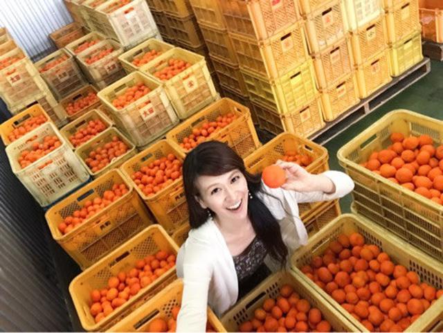 画像: 香川県の食材探求5小原紅早生(おばらべにわせ)、シャインマスカットなどフルーツも名産!JA香川