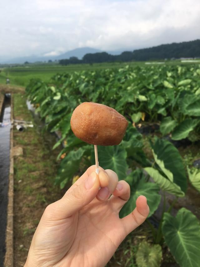 画像: 福井県民がひた隠しにする福井の魅力、勝手に5選