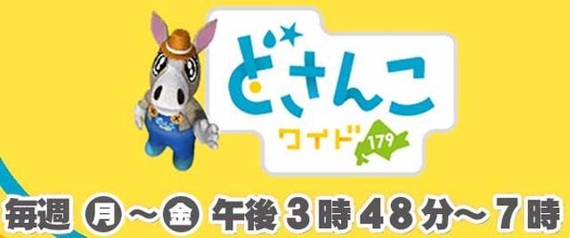 画像: 【TV出演】8/8 札幌テレビ「どさんこワイド179」 -