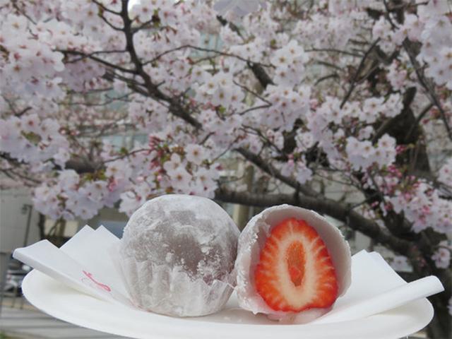 画像: 【福岡】涼!博多の老舗和菓子店で葛切り♪@博多 鈴懸本店