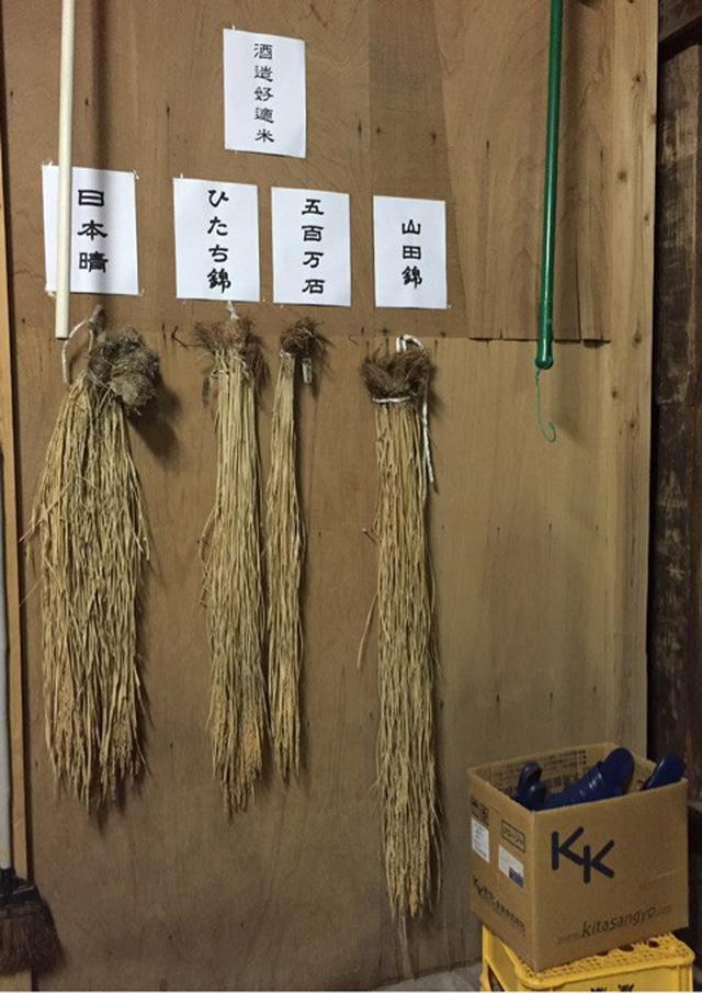 画像: 茨城県 磯蔵酒造さんへ