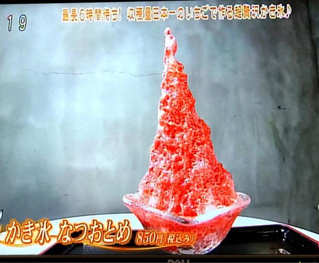 画像: テレビ出演「にじいろジーン」で 最長6時間待ち!世界一を目指す 贅沢かき氷!栃木いちご