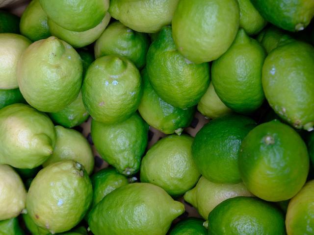 画像: 「南房総オレンジ村でレモン、館山でいちじく収穫体験!」