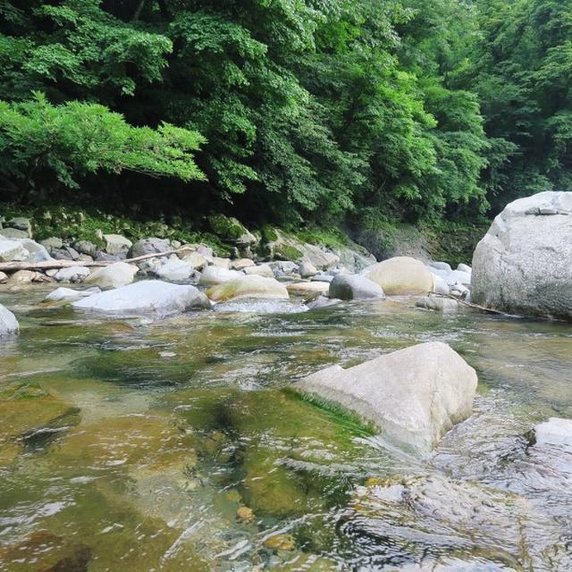 画像: 福井ウォーター遠征(福井県・大野/産地見学) : フォーリンデブはっしー  公式ブログ