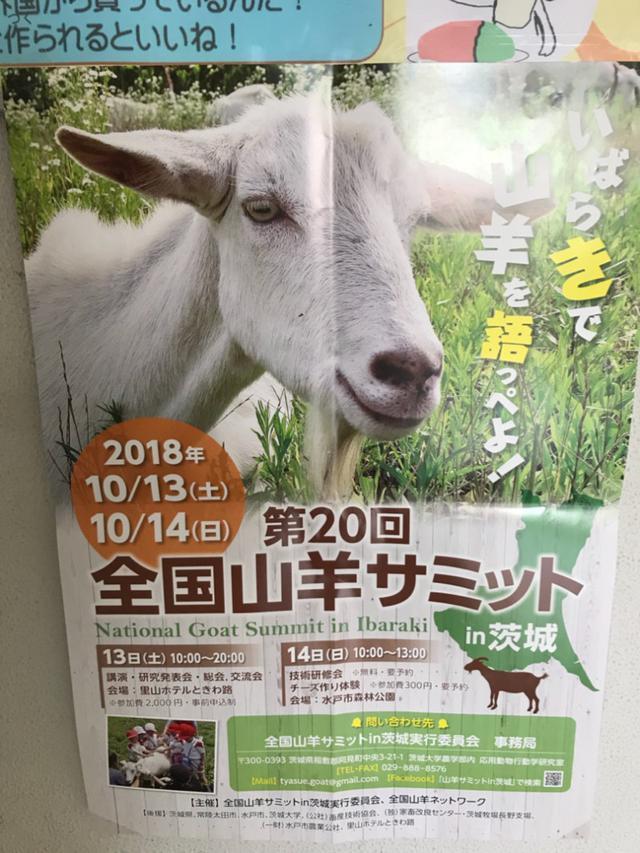 画像: 山羊を訪ねて佐久市の長野牧場へ