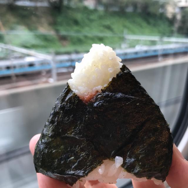 画像: 茨城県桜川市にある資格の養成所