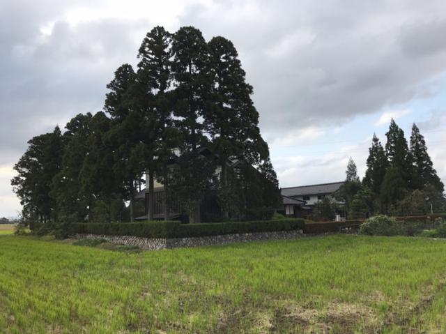 画像: 富富富!本日発売!とやま水土里フォーラムの大会で富山の農業をたくさん訪ねました。