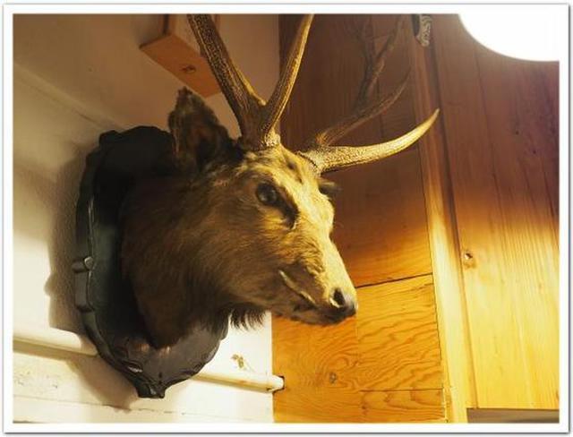 画像: カレーですよ4551(喜多見 ビート・イート)「やまけんの出張食い倒れ日記」のやまけんさんと、山のお肉。
