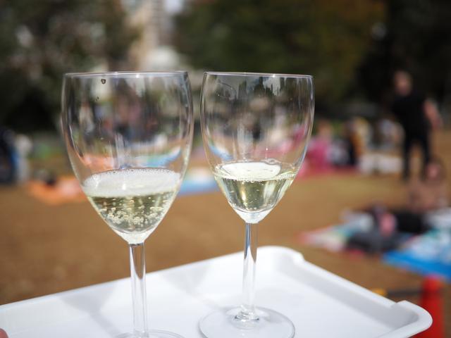 画像: 『大阪ビオワインフェスタ 2018』に参加して美味しいビオワインと絶品料理の数々を堪能しました!
