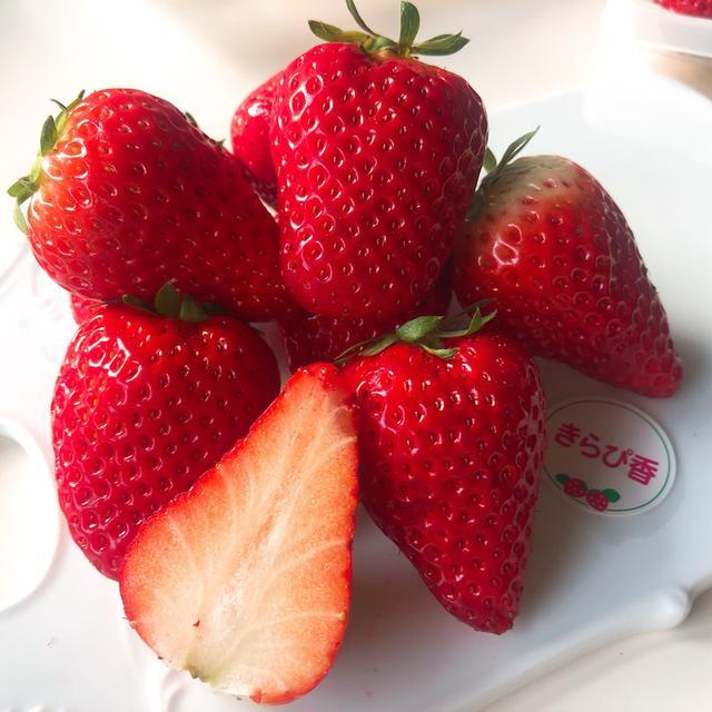 画像: 静岡「shimontaしもんた いちご農園」紅ほっぺ、きらぴ香 食べ比べ