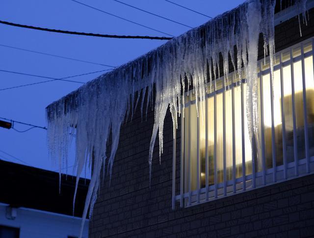 画像: 「真冬の知床羅臼根室の旅 風蓮湖 氷下待網漁見学と道の駅スワン44ねむろ」