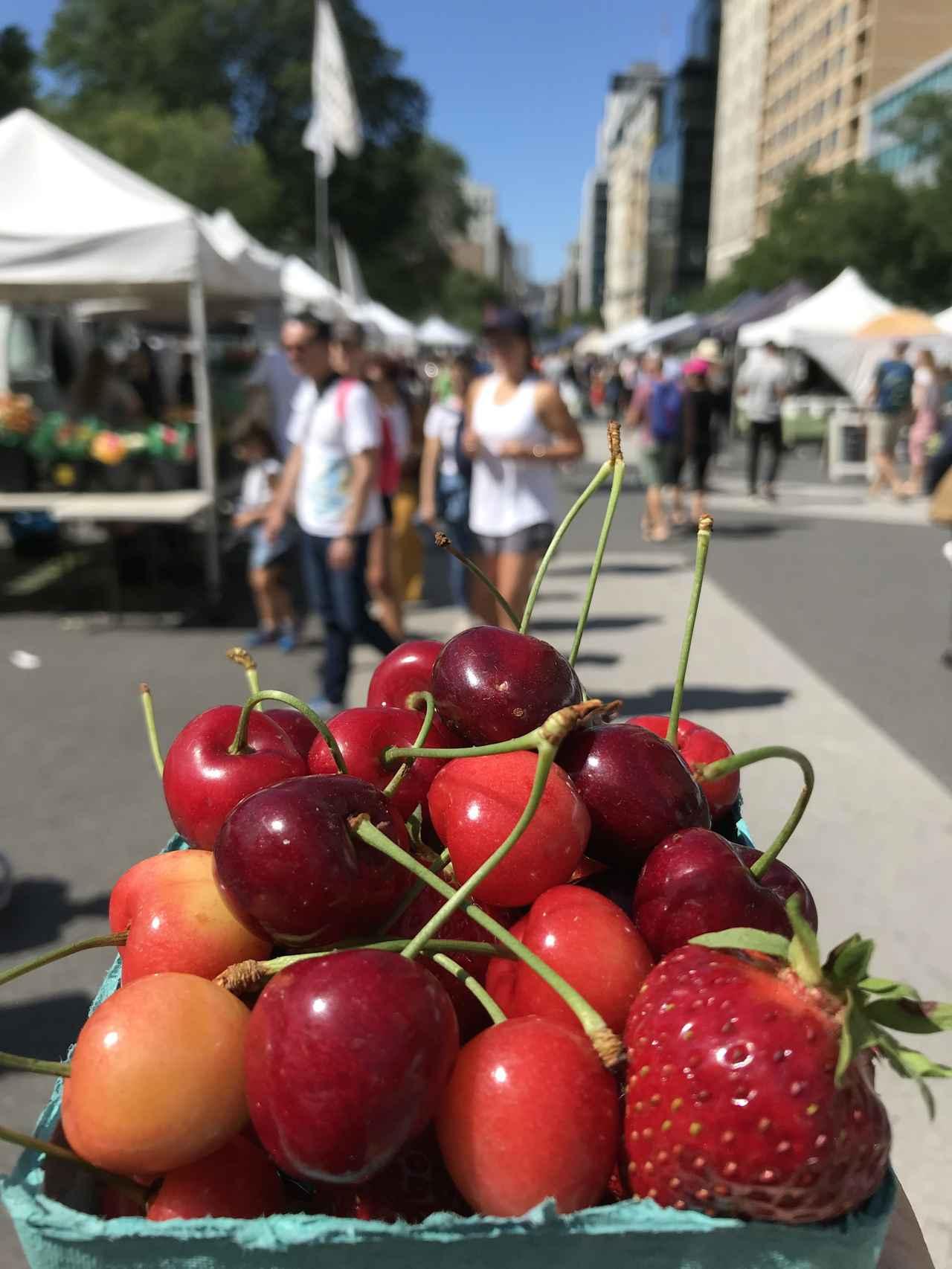 画像: 小谷あゆみ『ニューヨークの野菜マーケット事情‼️〜さくらんぼの巻〜ああ、自分はいま旅をしていると思った。』