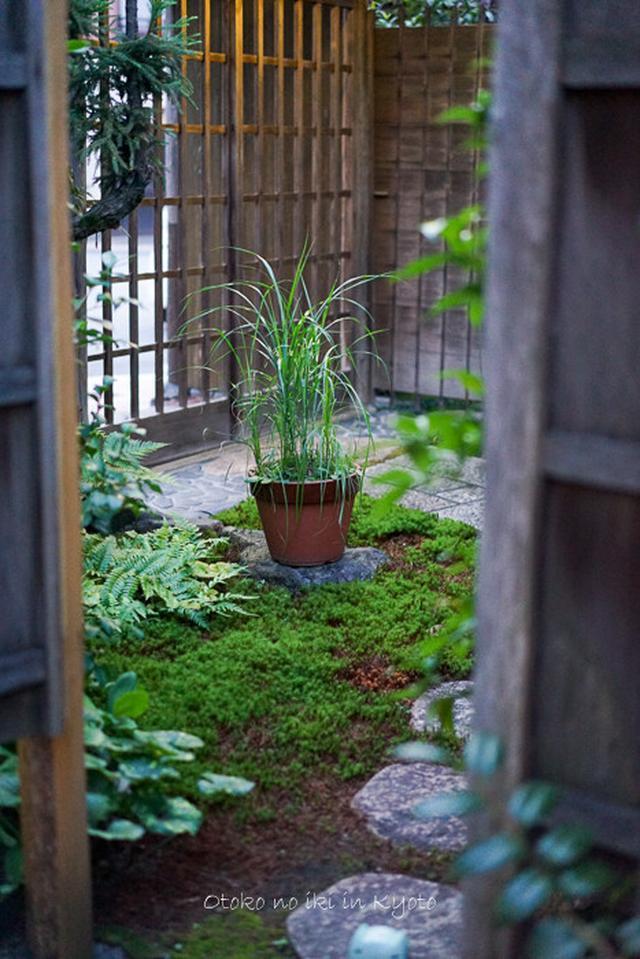 画像: 夏の丹後旅(京都)これも京都の魅力