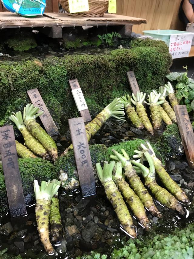 画像: 静岡県ふじのくに農村調査で、農業営む女優!工藤夕貴さんとご一緒しました