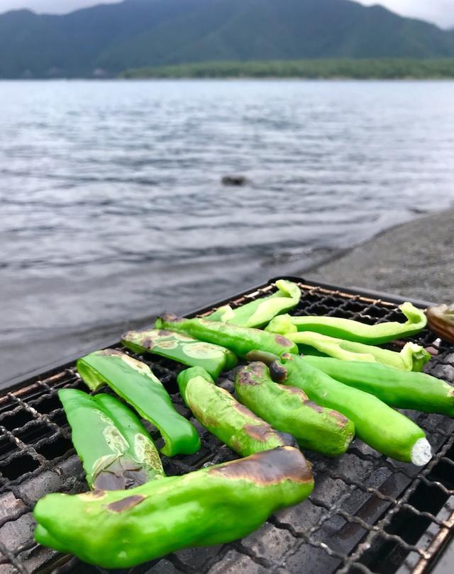 画像: 富士山麓の湖畔めぐり!女優工藤夕貴さんとネイチャー女子旅してきました♪田貫湖から本栖湖の巻