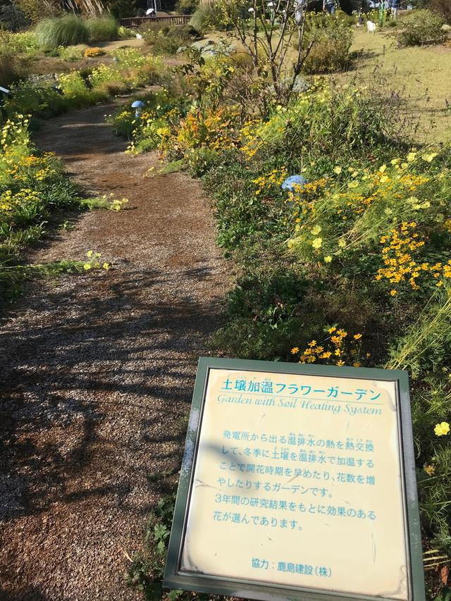 画像: 園芸福祉士の講座で名古屋港ワイルドフラワーガーデンへ