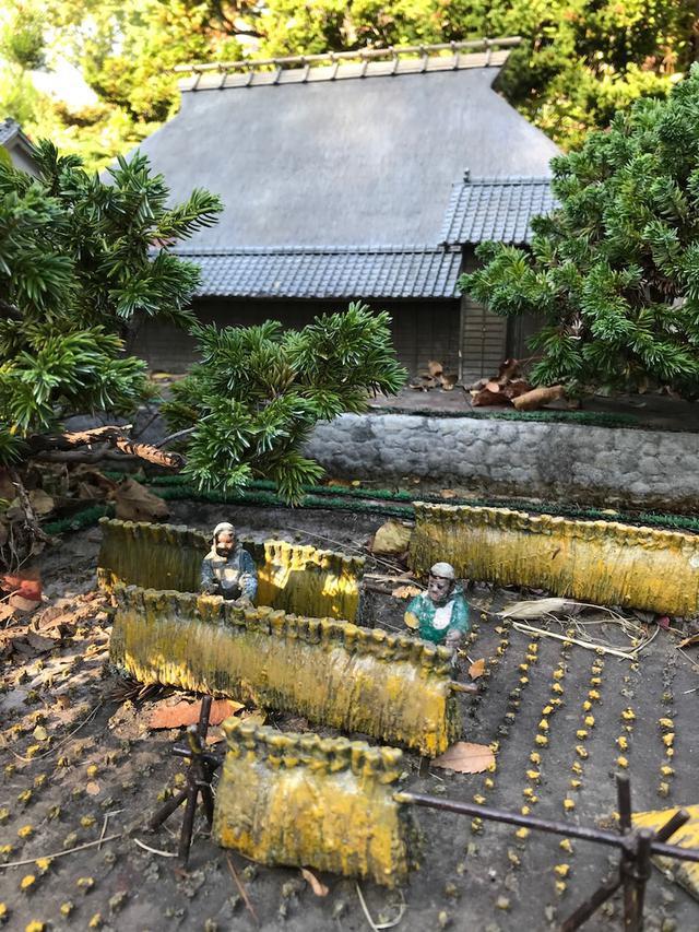画像: 名古屋へ園芸福祉の勉強にきました