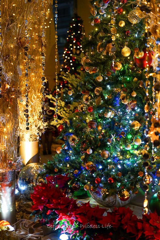 画像: グランドハイアットのクリスマスケーキ(六本木)