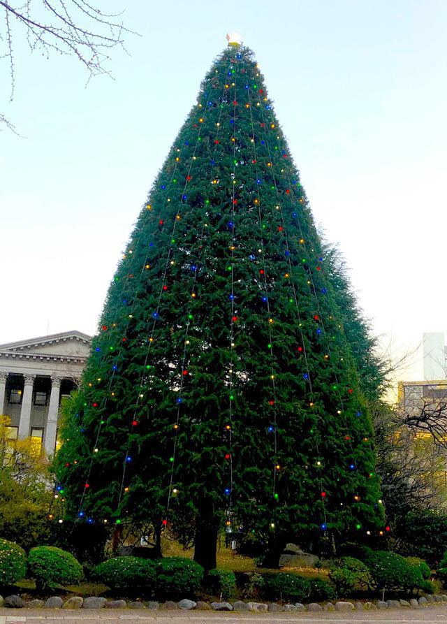 画像: 母校でクリスマス〜青山学院大学 開校70周年!