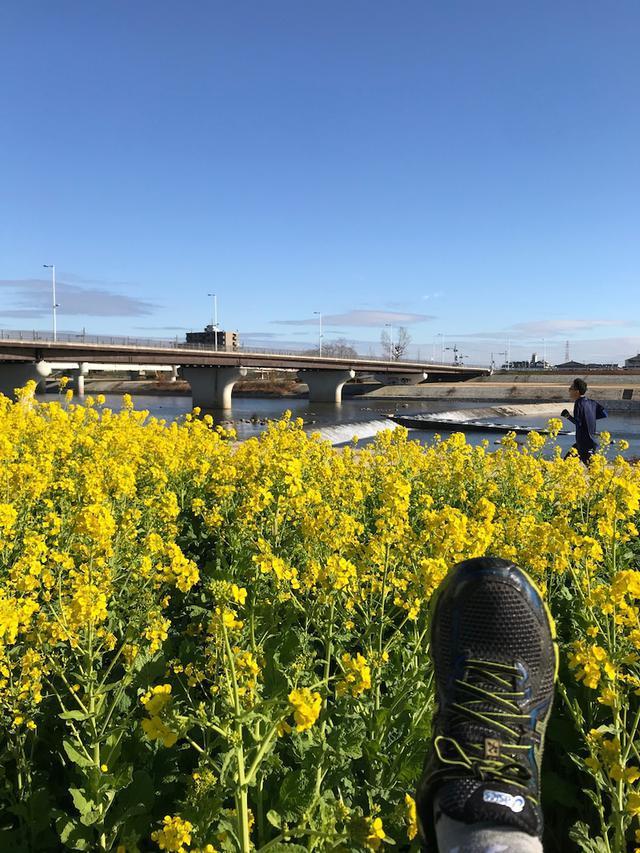 画像: 令和2年!あけましておめでとうございます。実家は暇だから散歩するしかない