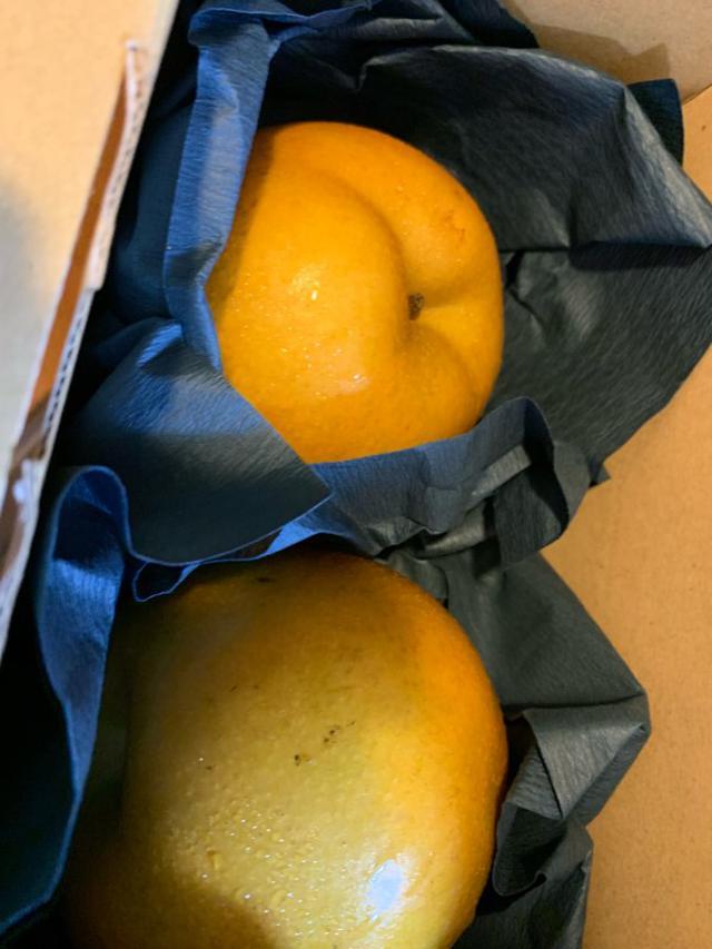 画像: とっても美味しい梨!