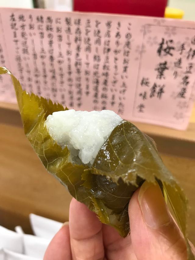 画像: 伊豆半島の西海岸@松崎町は「さくら葉」生産日本一の町!さくら葉もちを食べ歩き~!