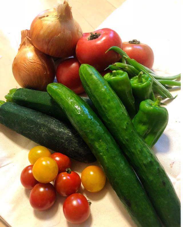 画像: 家庭菜園の野菜達☆