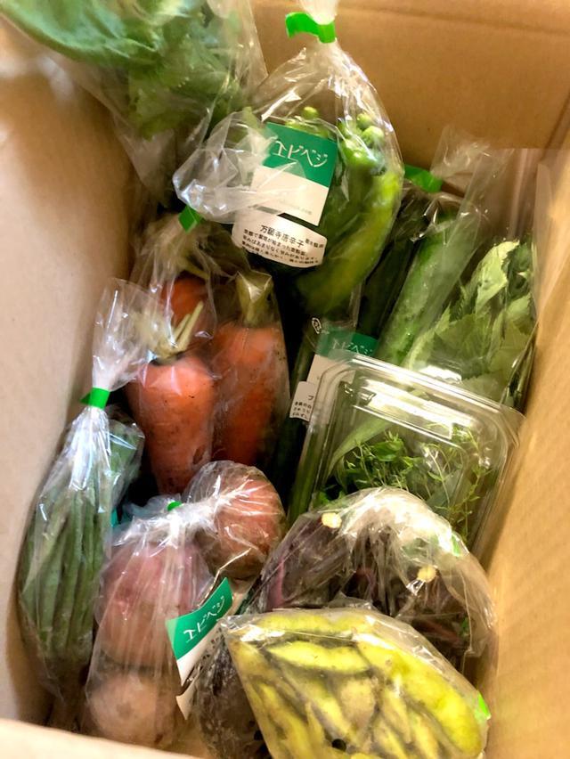 画像: エビベジの夏野菜♪
