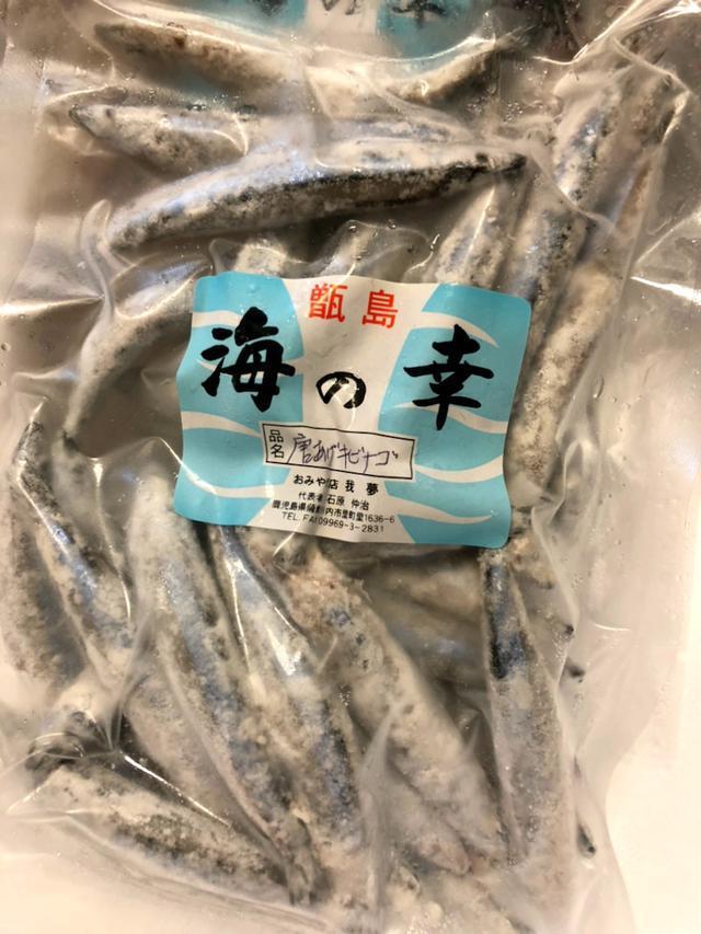 画像: 鹿児島県 甑島の魚♪