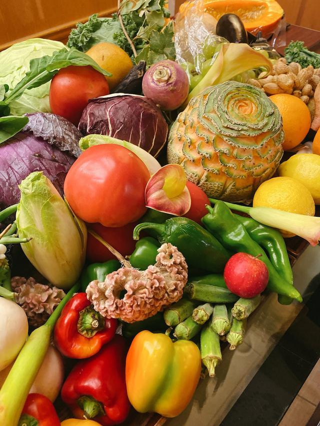 画像: 自由が丘にオープン!!️ シェフは農業も兼任!朝どれ野菜がふんだん!「レストラン ソルフェージュ」