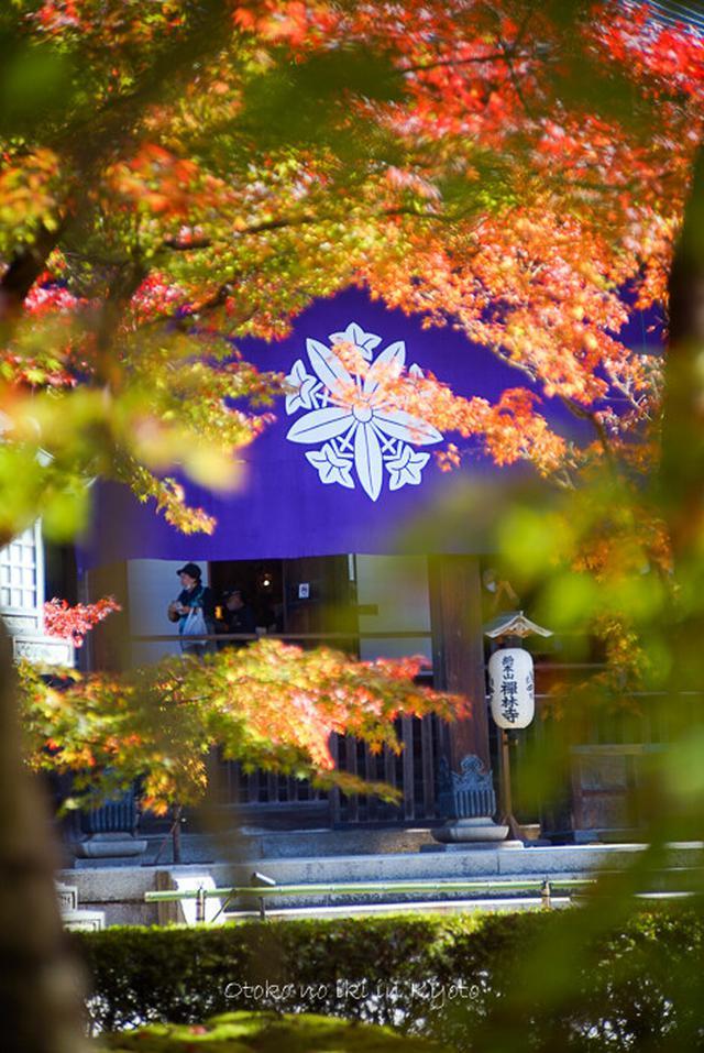 画像: そうだ、京都行こう。 2020秋