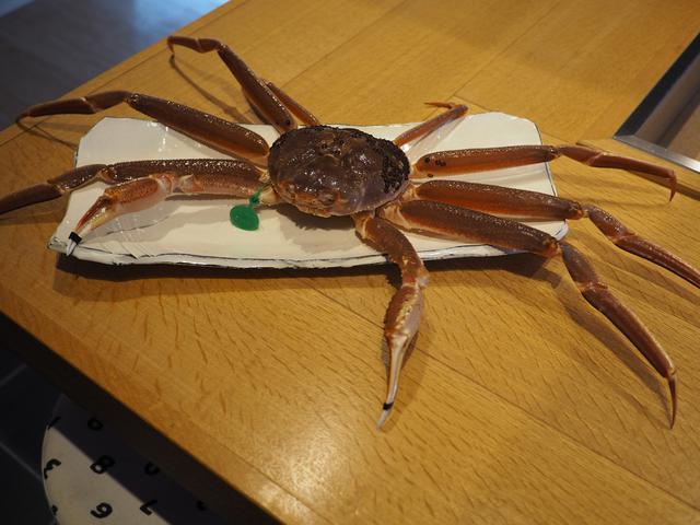 画像: 1日1組限定の夢にまで見た間人蟹のフルコースをいただいてきました! 京都府京丹後市 「京丹後地産食堂 味工房 海鮮ひさみ」