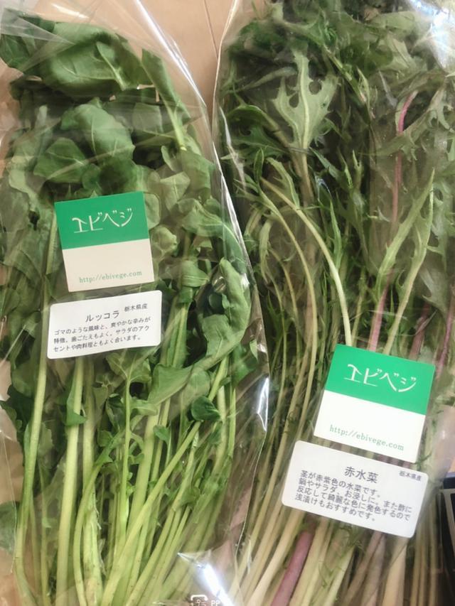 画像: エビベジのお野菜♪