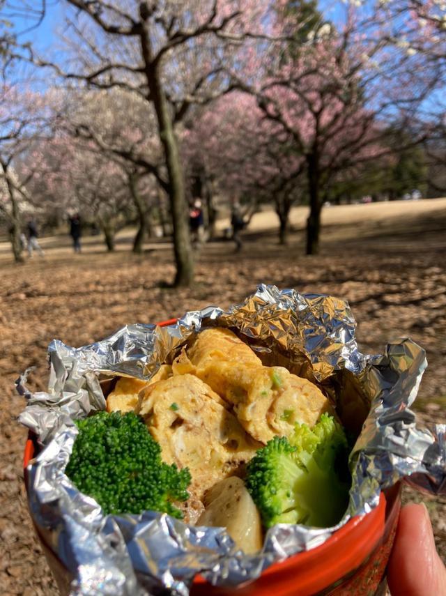 画像: ご近所ツーリズム!お弁当持って砧公園へ梅のお花見でメジロ発見!!️
