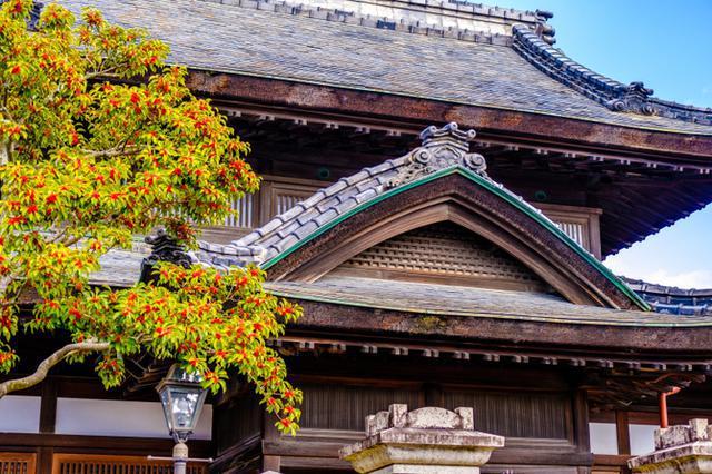 画像: 「岡山・津山 旧銀行建築のPORT ART&DESIGN TSUYAMA( ポートアート&デザイン津山)」