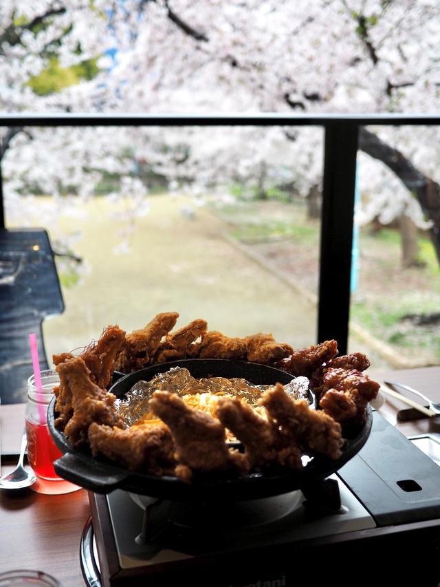 画像: 目の前に咲き乱れる満開の桜を見ながら美味しい韓国料理をいただきました! 中央区高津 「ダンミクラシック」
