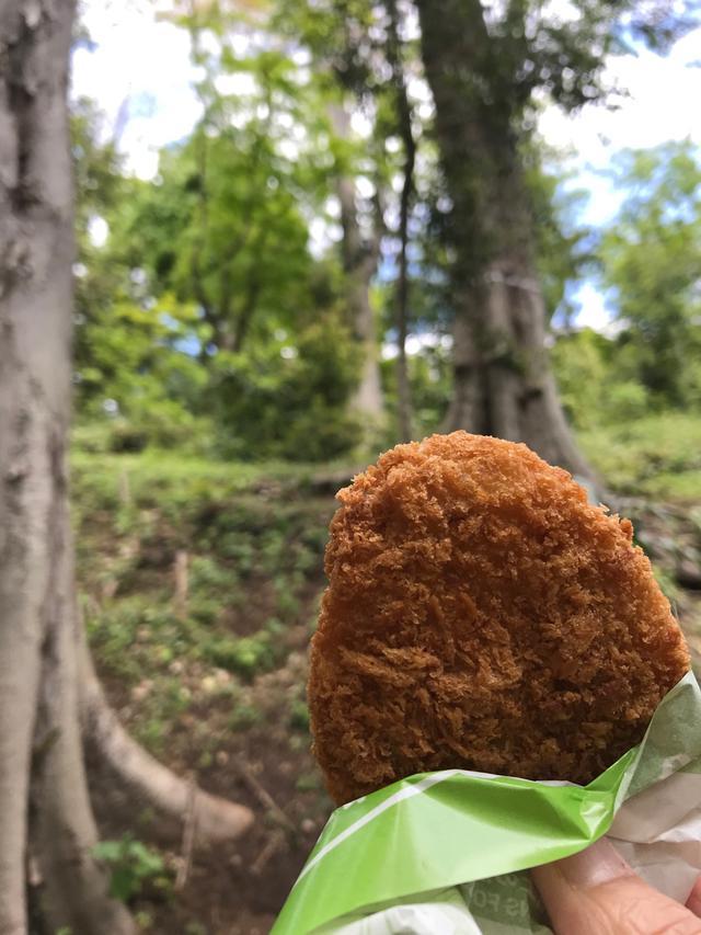 """画像: """"森でコロッケを食べていたら思わぬ客人におどろかされたという昨日の話。"""""""